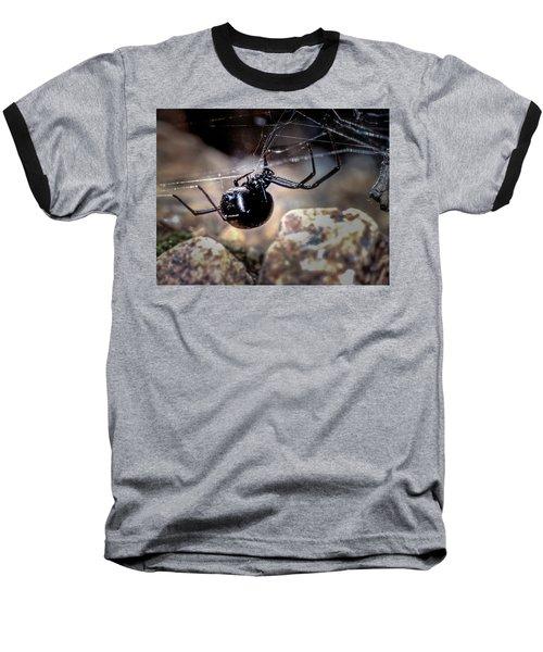 Black Widow Spider Baseball T-Shirt