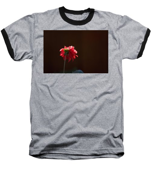 Black With Rose Baseball T-Shirt