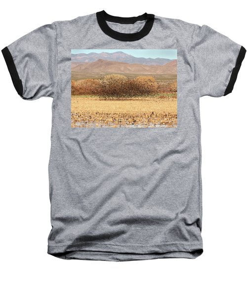 Blackbird Cloud Baseball T-Shirt