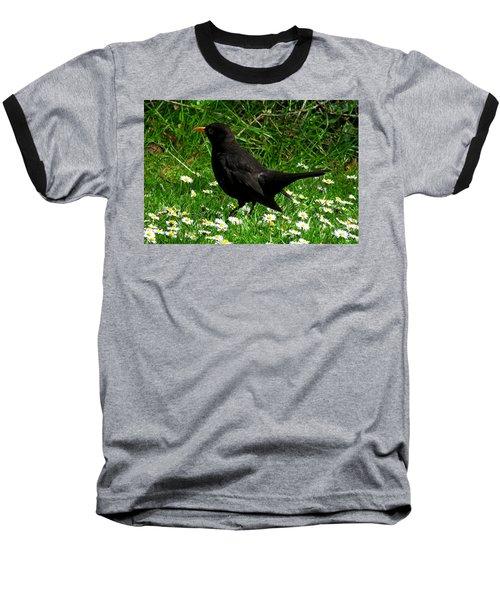 Blackbird Baseball T-Shirt