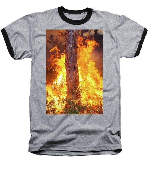 Blazing Pine Baseball T-Shirt