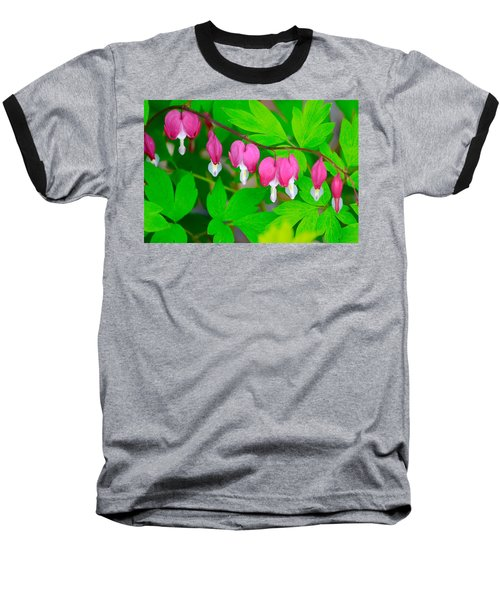 Bleeding Hearts Baseball T-Shirt