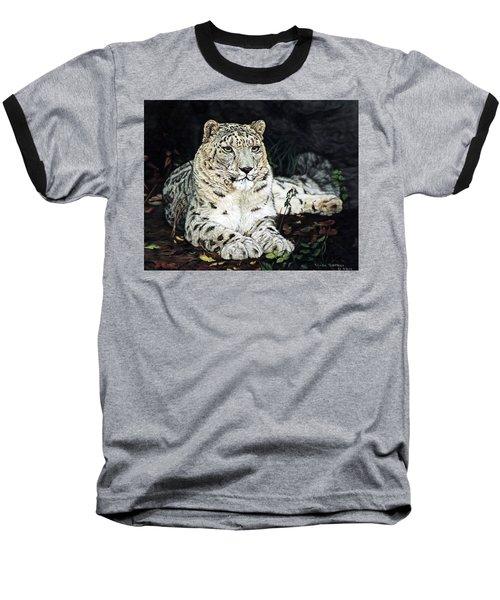Blizzard Baseball T-Shirt by Linda Becker