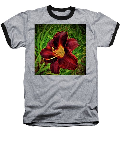 Blood Lily  Baseball T-Shirt