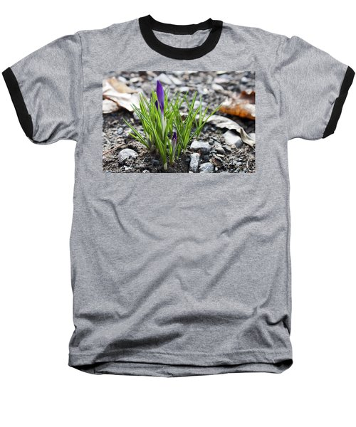 Bloom Awaits Baseball T-Shirt by Jeff Severson