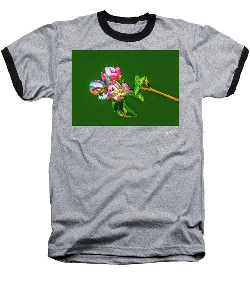 Bloom May 2016 Artistic Baseball T-Shirt