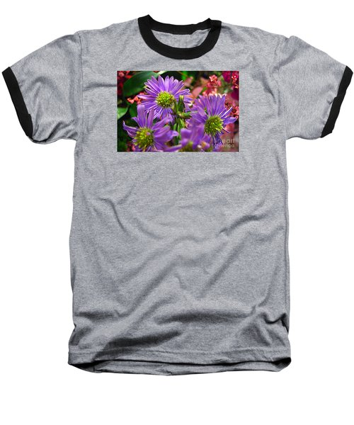Blooming Asters Baseball T-Shirt by Merton Allen