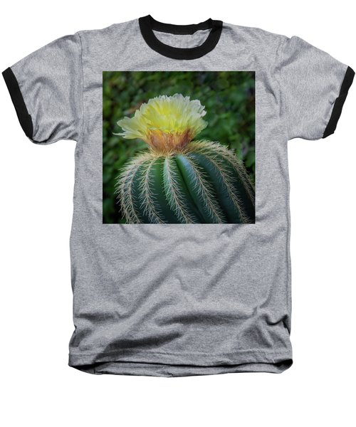 Blooming Cactus Baseball T-Shirt
