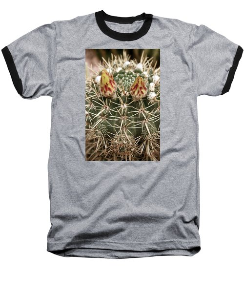 Blooming Cactus1 Baseball T-Shirt