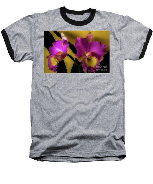 Blooming Cattleya Orchids Baseball T-Shirt