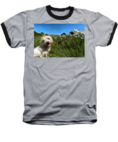 Blooming Daffodils In The Antola Park With Maltese II Paint Baseball T-Shirt