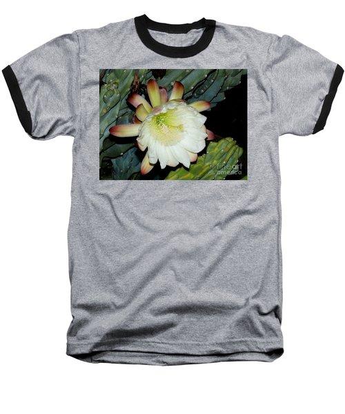 Blooming Night Cereus Baseball T-Shirt