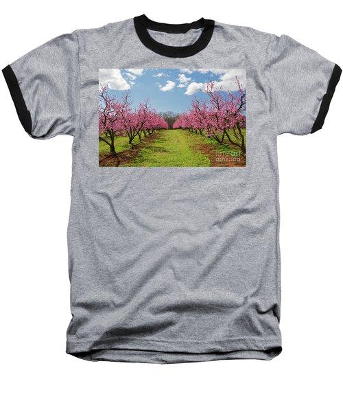 Blooming Peach Orchard 1 Baseball T-Shirt