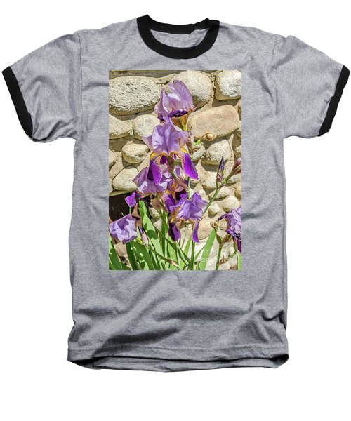 Blooming Purple Iris Baseball T-Shirt by Sue Smith