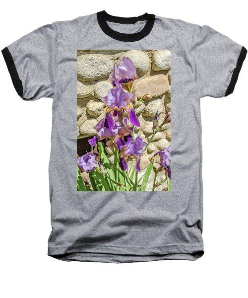Blooming Purple Iris Baseball T-Shirt