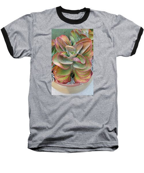 Blooming Succulent Baseball T-Shirt