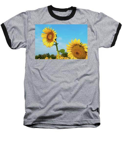 Blooming Sunflower In Blue Sky Baseball T-Shirt