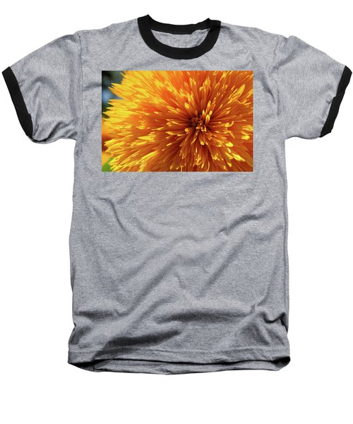 Blooming Sunshine Baseball T-Shirt by Marie Leslie