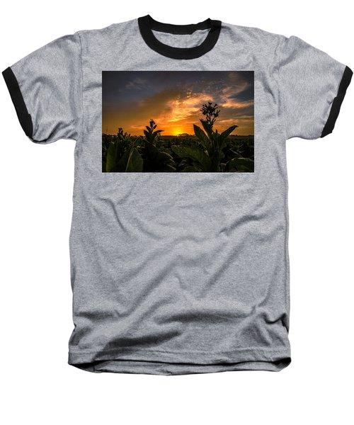 Blooming Tobacco Baseball T-Shirt