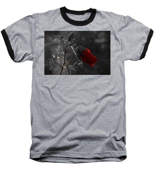New Life Baseball T-Shirt by Sherman Perry