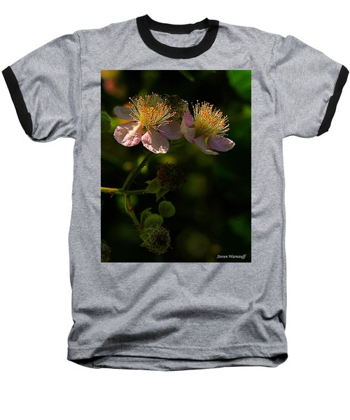 Blossoms 3 Baseball T-Shirt by Steve Warnstaff