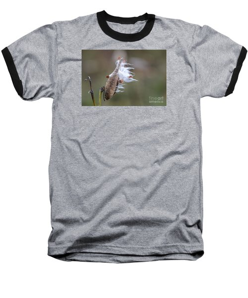 Blowing In The Wind Baseball T-Shirt by Cindy Manero