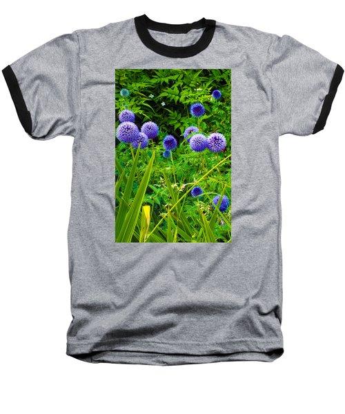 Blue Allium Flowers Baseball T-Shirt by Judi Saunders