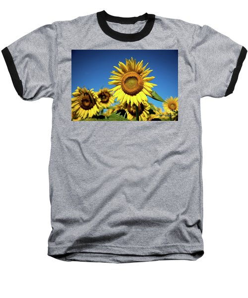 Baseball T-Shirt featuring the photograph Blue And Gold by Sandy Molinaro