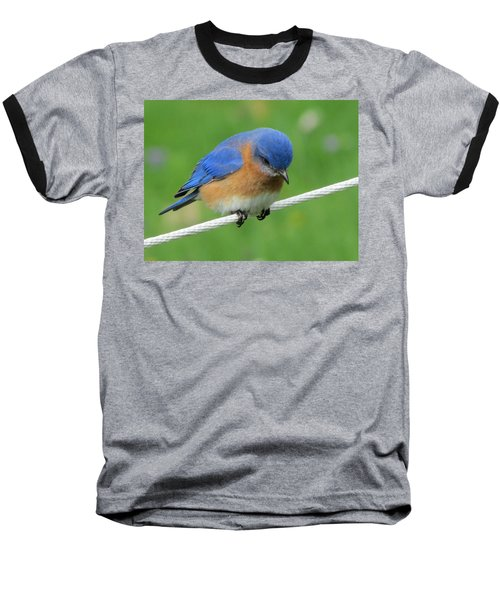 Blue Bird On Clothesline Baseball T-Shirt