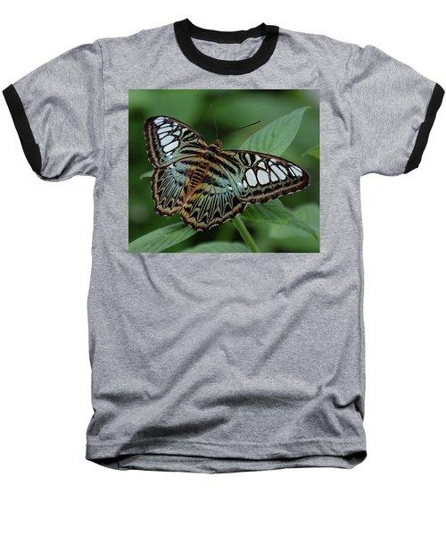 Blue Clipper Butterfly Open Baseball T-Shirt