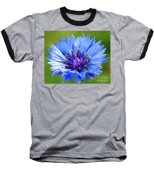 Blue Cornflower Baseball T-Shirt