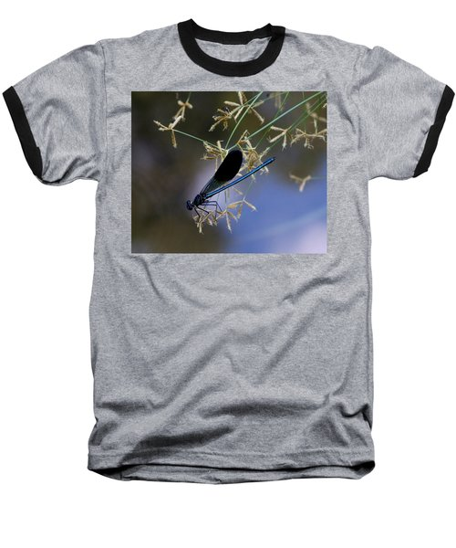 Blue Damsfly Baseball T-Shirt