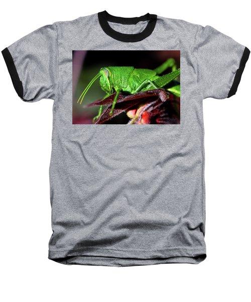Blue Eyed Green Grasshopper 001 Baseball T-Shirt