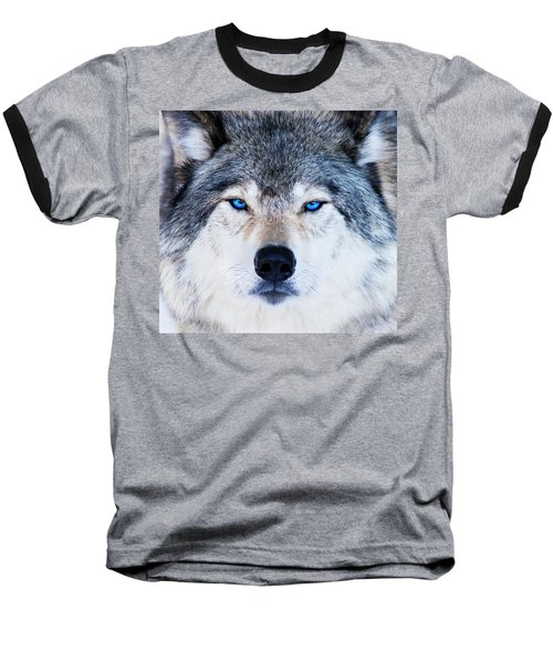 Baseball T-Shirt featuring the photograph Blue Eyed Wolf Portrait by Mircea Costina Photography