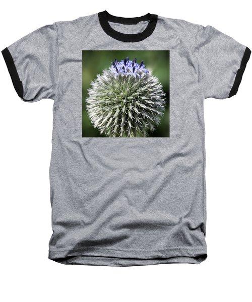 Blue Globe Thistle 3 - Baseball T-Shirt