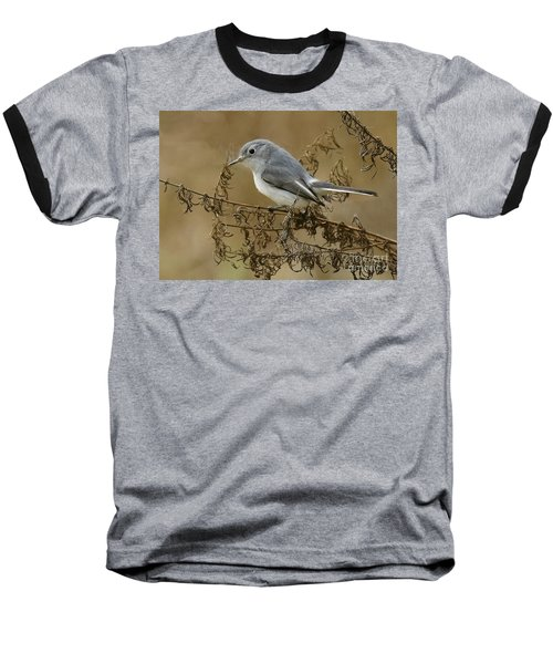 Blue-gray Gnatcatcher Baseball T-Shirt by Myrna Bradshaw