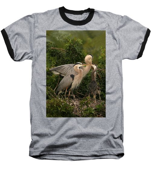 Blue Heron Family Baseball T-Shirt by Shari Jardina