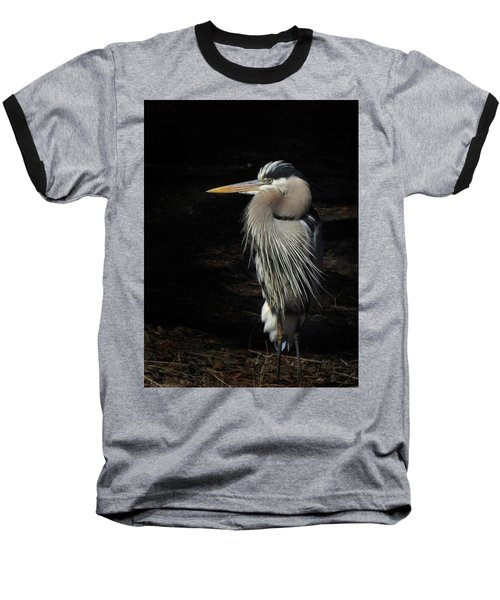 Blue Heron Gaze Baseball T-Shirt by Deborah Smith
