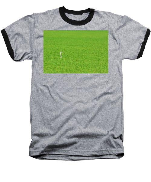 Blue Heron In Field Baseball T-Shirt by Josephine Buschman