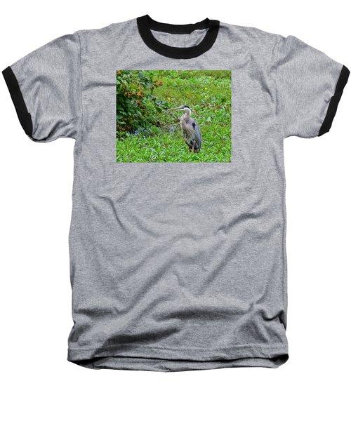 Blue Heron Baseball T-Shirt by Kathy Eickenberg