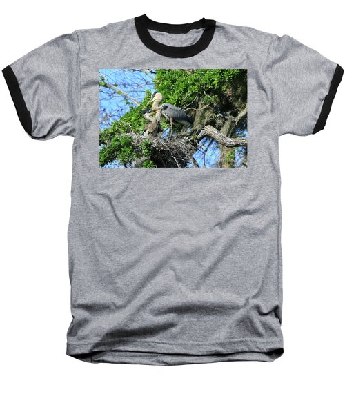 Baseball T-Shirt featuring the photograph Blue Heron Series Baby 1 by Deborah Benoit
