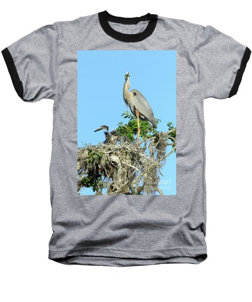 Baseball T-Shirt featuring the photograph Blue Heron Series Baby 2 by Deborah Benoit