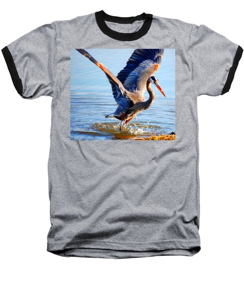 Blue Heron Baseball T-Shirt by Sumoflam Photography