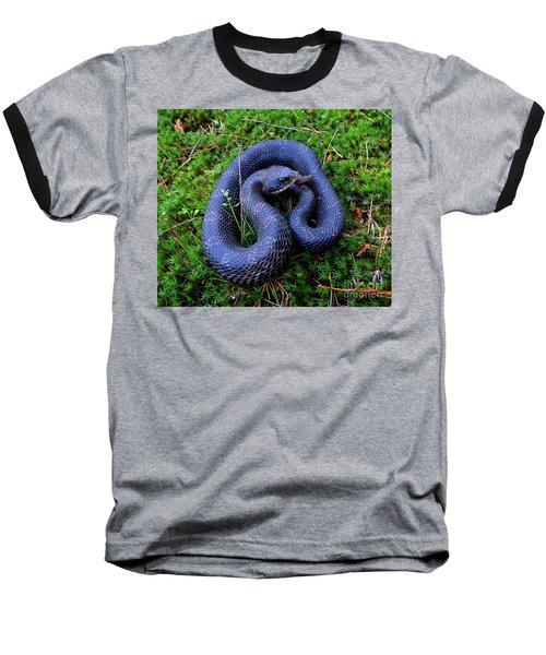Blue Hognose Baseball T-Shirt