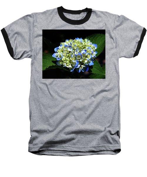 Blue Hydrangea Onstage 2620 H_2 Baseball T-Shirt