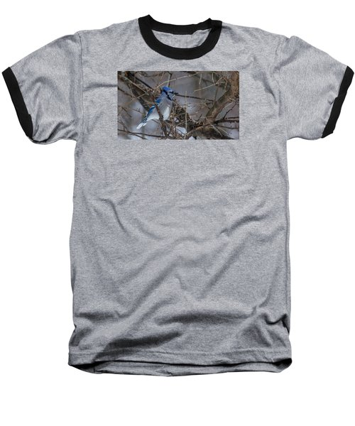 Baseball T-Shirt featuring the photograph Blue Jay by Dan Traun