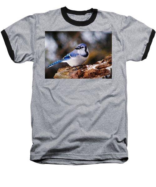Blue Jay Day Baseball T-Shirt