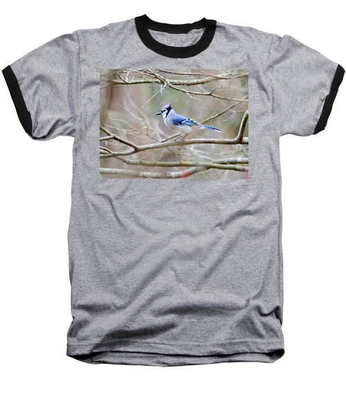 Baseball T-Shirt featuring the photograph Blue Jay by George Randy Bass
