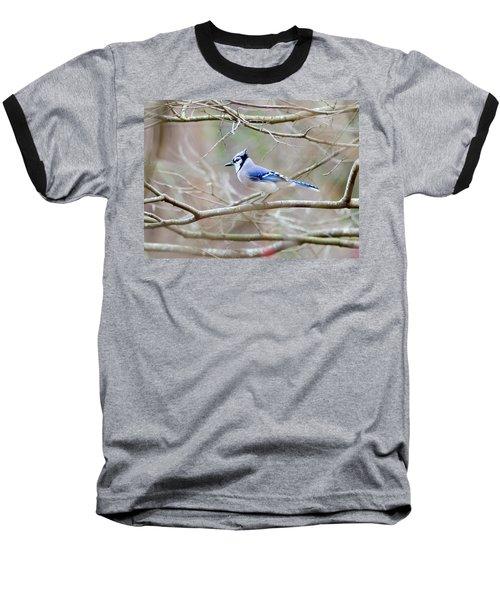 Blue Jay Baseball T-Shirt by George Randy Bass