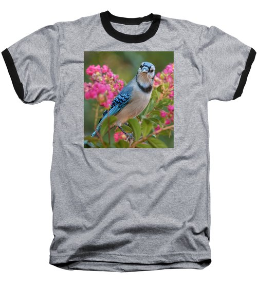 Baseball T-Shirt featuring the photograph Blue Jay In Crepe Myrtle by Jim Moore